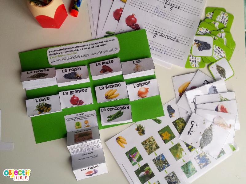 fruits et légumes dans le coran super dossier activité Objectif IEF